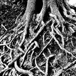 """Sinister Roots"" by steveholt"