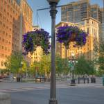 """street lamp"" by SolLeonard"