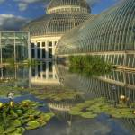 """conservatory_tonemapped copy"" by SolLeonard"