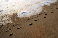 Foot Prints in the Sand..  Eh eh eh..