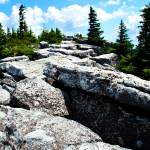 """dolly sods"" by ericaalicia"