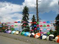 Parasols on Mountain Road - nathiagali IMG_860801