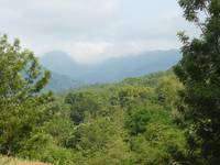 Beauty of Wayanad