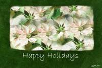 Pink and White Poinsettias 1 Painterly - Happy Hol