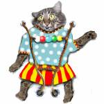 """""""Circus Cat"""" by wingwind"""