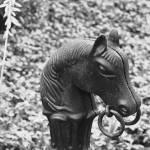 """""""Horse Tie"""" by joshyb1973"""