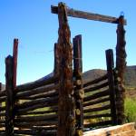 """Cattle Chute - Rustic Western Art"" by JMcQ"