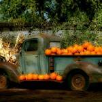 """The Pumpkin Truck"" by DigiDi"
