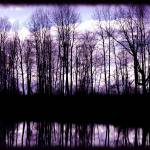 """Dark Reflections"" by cre8ivepix"