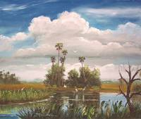 Florida Country Pond