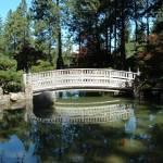 """""""Manito Park Bridge"""" by angieAZ"""