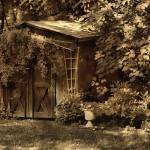 """""""Shed"""" by Photopeb"""