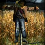 """The Scarecrow"" by intocreating"
