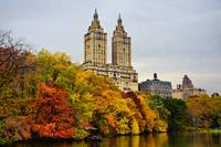 Colors of Autumn in NYC
