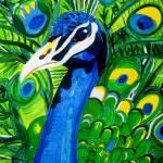 """peacock"" by psychebabel"