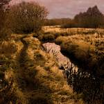 """Autumn Sunset on Snow Creek"" by MindsEyeImagery"