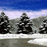 """A Winter"