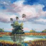 """Everglades Wilderness"" by mazz"