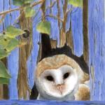 """Peek-a-Who"" by catspaw"