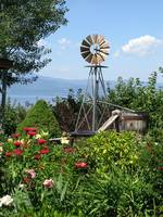 Garden w/ Windmill on Flathead Lake