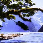 """Milford Sound No1"" by johncorney"