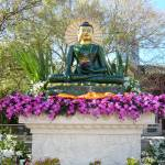 """""""Budha on Global tour to promote peace"""" by adriannah"""