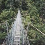 """""""Swinging bridge N.Z."""" by adriannah"""