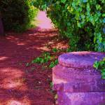 """A tree lined path - Scavi Ostia Antica"" by arttraveler"