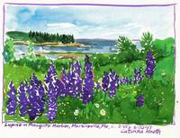 Lupine Maine Harbor Watercolor