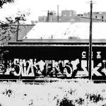 """Graphitti on CSX train"" by davidflurkey"