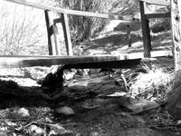 Footbridge over Bear Creek