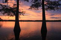 Finch Lake Cypress Sunset