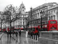 Red buses in London