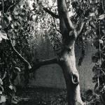 """""""Stands Alone"""" by kreinhardt"""