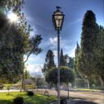 """volatile sul lampione del parco"" by paride"