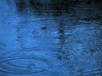 Raindrops on pond_5638