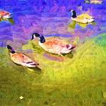 """The duck pond"" by cherylthomas"