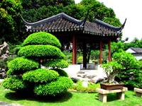 Bonsai Garden (Singapore chinese garden, 裕华园)