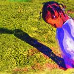 """My shadow and me"" by cherylthomas"