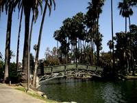 Bridge at the Echo Park -- Los Angeles