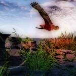 """Eagle"" by Megan11"