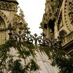 """Notre Dame #3, Paris, France, 2008"" by terynrobinson"