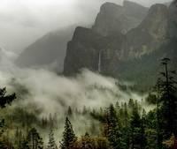 Yosemite gallery