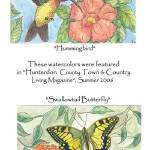 """Hummingbird&Butterfly (c)2006 L.Curtis"" by LaurenCurtis"