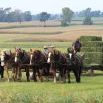 """""""Baling the Hay"""" by FordLou"""