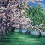 """Cherry Blossoms at Hains Point"" by LynnMorgan"