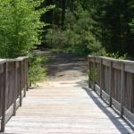 """pathway"" by spiritsoflena"