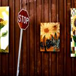 """Stop the Sunflowers"" by firda"