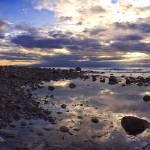 """Puget Sound Tide Pool Panorama"" by JimDockery"