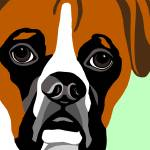 """Boxer Fine Art Print"" by waterart"